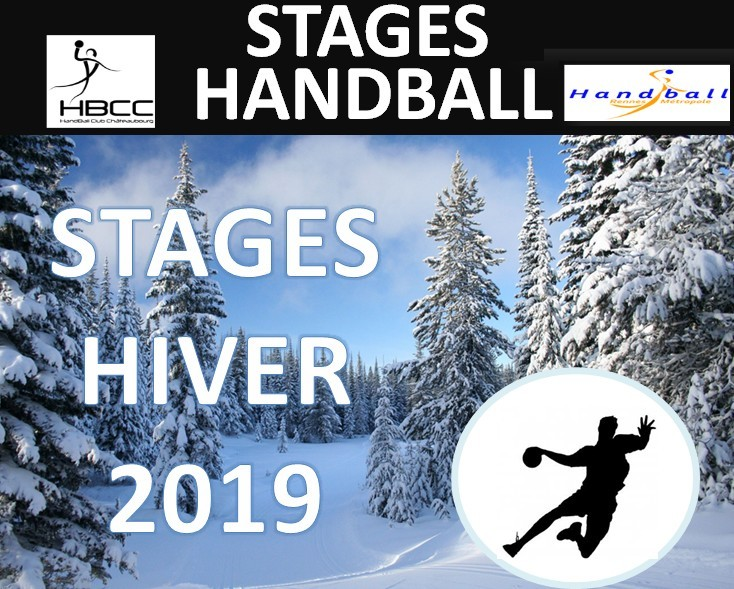Stage Hiver 2019